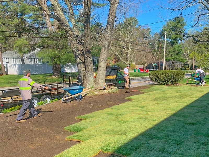 Lawn Installation Team
